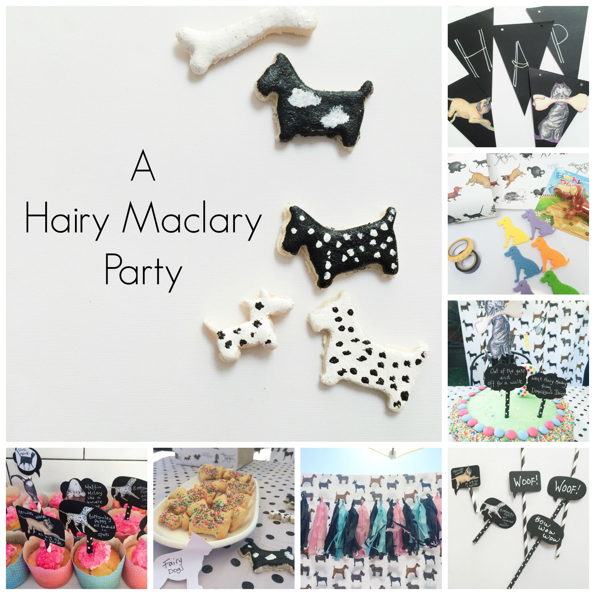 Hairy Maclary Party